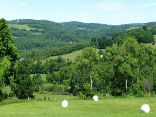 Farmland Near Cortland 19 Acres : Cincinnatus : Cortland County : New York