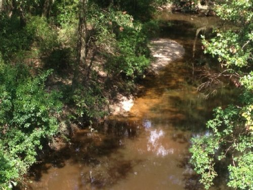 79.26 Acres Pearl River Co. : Carriere : Pearl River County : Mississippi