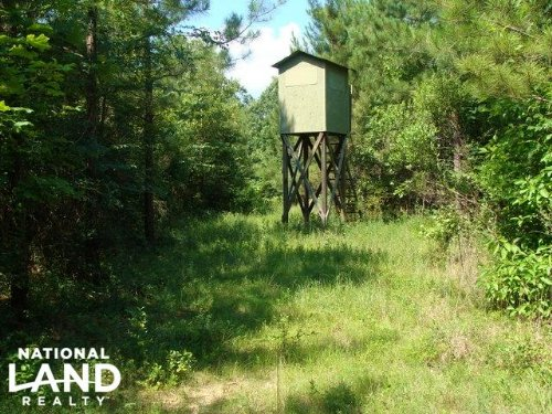 90+/- Acre Hunting & Timber Tract : Monticello : Drew County : Arkansas