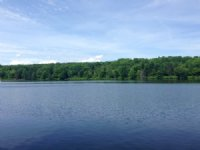 Beaver Meadow Lakefront : Smyrna : Chenango County : New York