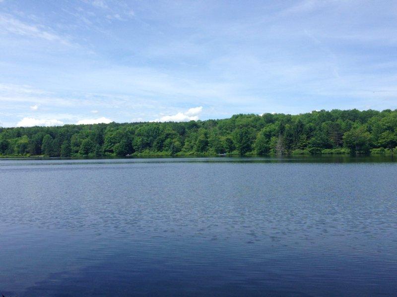 Beaver Meadow Lakefront : Smyrna : Chenango County : New York