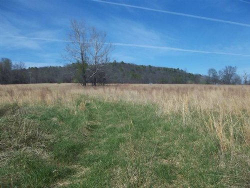 70 M/L Acres On Spring Creek : Peggs : Cherokee County : Oklahoma