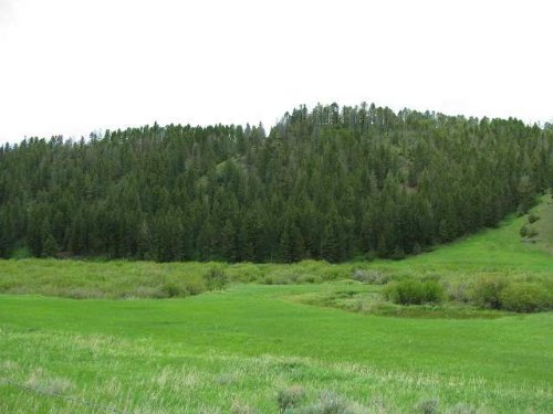 Newlan Creek Fishing Gem : White Sulphur Springs : Meagher County : Montana