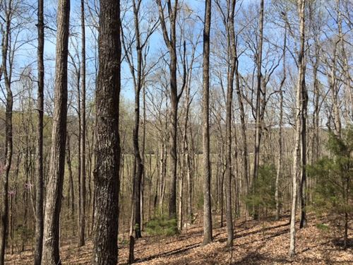 63 Acres Tallapoosa Hwy : Cedartown : Polk County : Georgia