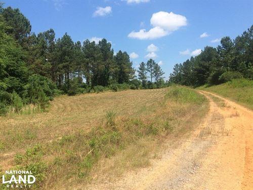 Samantha Hunting & Timber Investmen : Samantha : Tuscaloosa County : Alabama