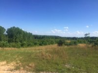 80+/- Acres With Lake : South Pittsburg : Marion County : Tennessee