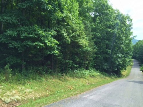 5.02+/- Acres Near Hales Bar Marina : South Pittsburg : Marion County : Tennessee
