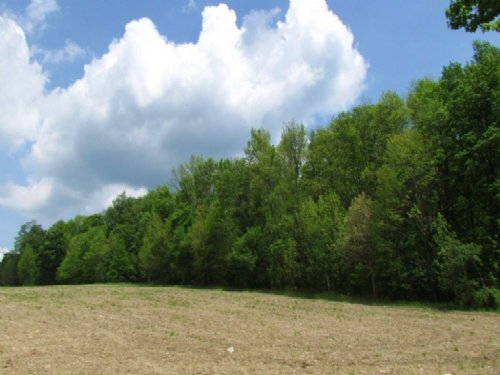 68 Acres Hunting Land Trophy Deer : Greene : Chenango County : New York