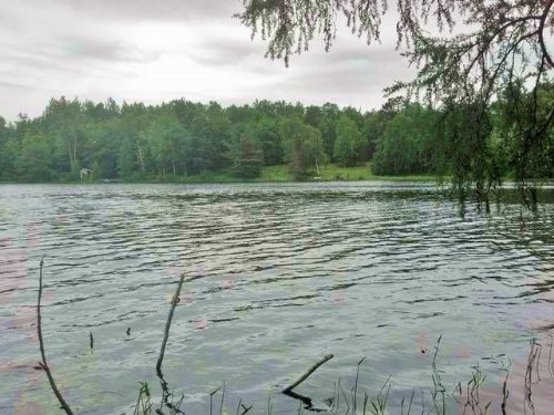 17.80 Acres On Lucy Lake : Lac Du Flambeau : Vilas County : Wisconsin