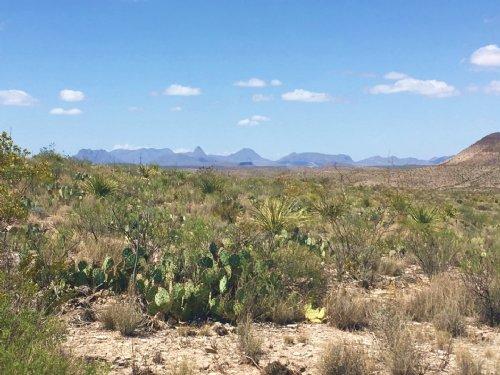 10 Acres Of High Desert : Terlingua : Brewster County : Texas