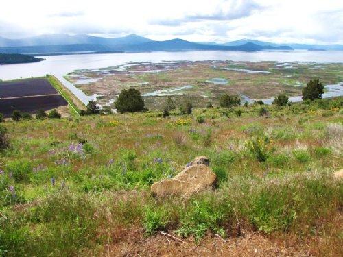 Home Site With Lake Views : Klamath Falls : Klamath County : Oregon
