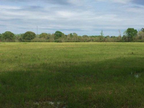 Land For Sale Pasture Land Franklin : Franklinton : Washington Parish : Louisiana
