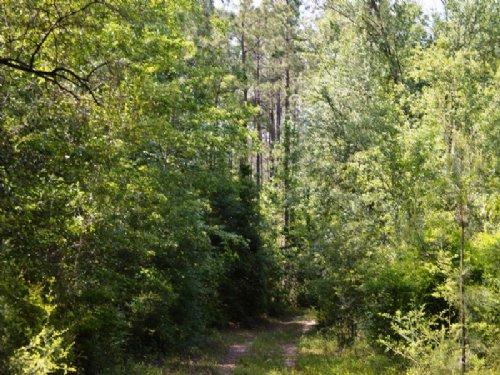 Sand Path Road : Bonifay : Washington County : Florida