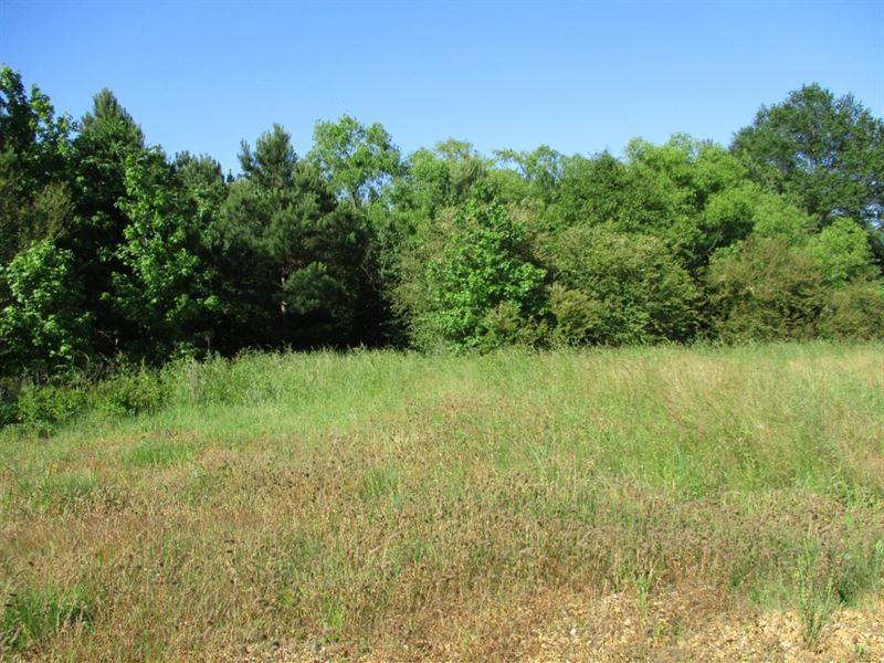 6 Commercial Acres In Webster Count : Mathiston : Webster County : Mississippi