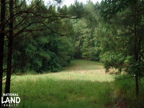 Hunting And Timberland Investment O : Meridian : Lauderdale County : Mississippi
