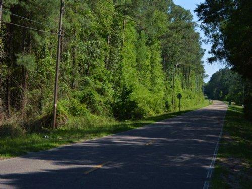 Bonnett Pond : Chipley : Washington County : Florida