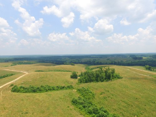 Over 650 Fenced Acres : Waverly : Humphreys County : Tennessee