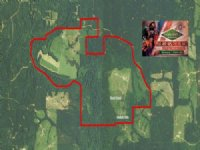 1440 Ac - Contiguous Pasture/Timber : Farmerville : Union Parish : Louisiana