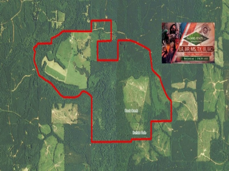1440 Ac - Contiguous Pasture/Timber : Farmerville : Union Parish : Louisiana