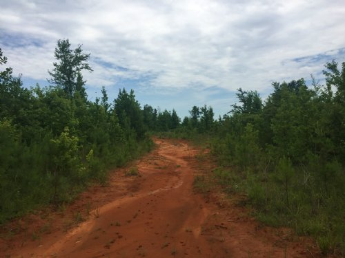 Stallworth Tract : Fort Deposit : Lowndes County : Alabama