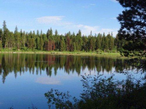 Placid Lake Preserve : Seeley Lake : Missoula County : Montana