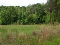 Sam Leake Road - 121908 : Woodville : Wilkinson County : Mississippi