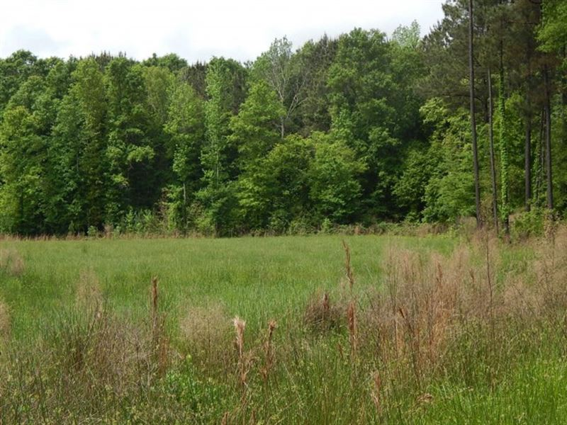 Sam Leake Road, 121908 : Woodville : Wilkinson County : Mississippi