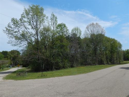 Dean Griner Road - 123651 : Columbia : Marion County : Mississippi