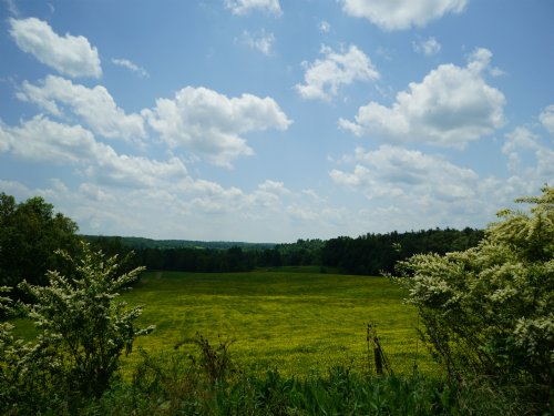 Sprawling Homesite Near Crossville : Crossville : Cumberland County : Tennessee