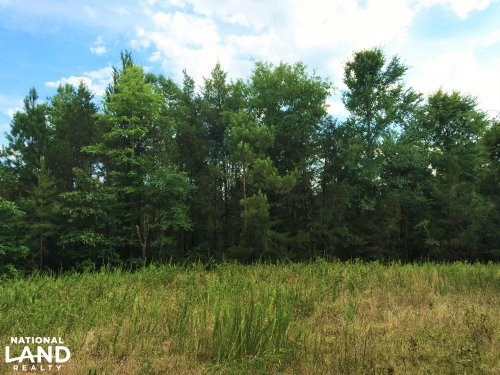Charlies Creek Recreational Land : Lowndesville : Abbeville County : South Carolina