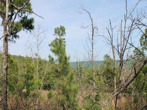 10.7 Acres Indian Ridge Ii : Kiowa : Pittsburg County : Oklahoma