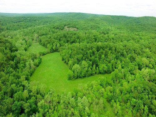 89 Acres, 30615 Little Proctor Rd : Gravois Mills : Morgan County : Missouri