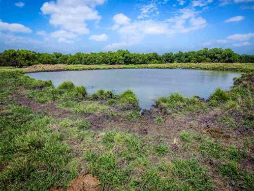 169+ Acres / 30131 : Cooper : Delta County : Texas
