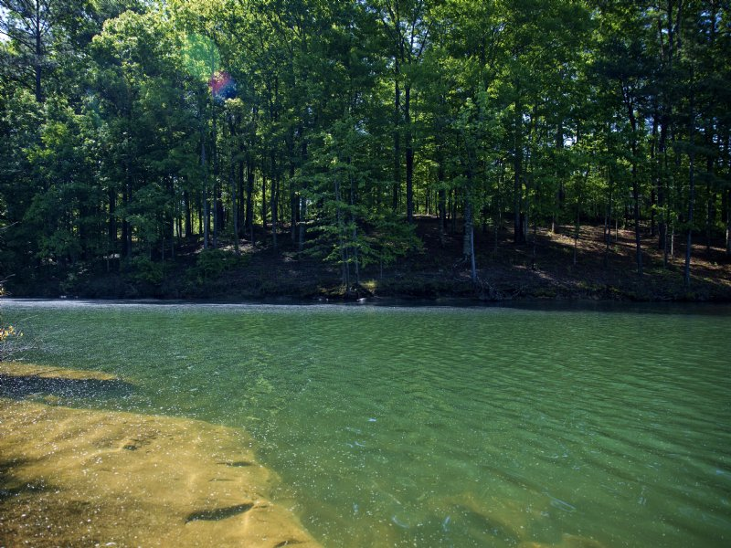 Smith Lake Al Property For Sale By Owner