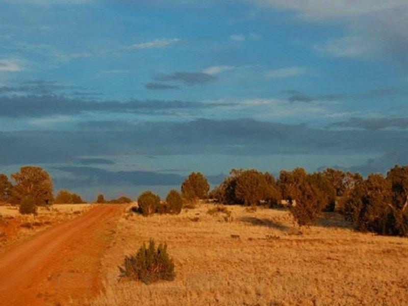 1.06 Acres In Bridge Canyon Country : Seligman : Yavapai County : Arizona