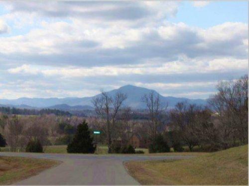 Mountain Views On Cul-de Sac : Wirtz : City of Virginia Beach County : Virginia