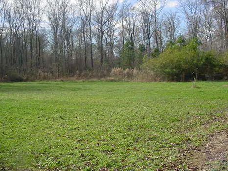 60 Acre Turn Key Operation : Crawfordville : Taliaferro County : Georgia