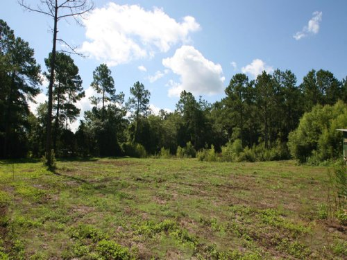4.16 Acres In Established Community : Lake City : Columbia County : Florida