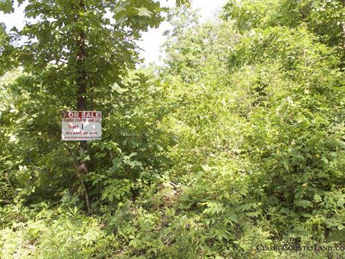 Thunder Mountain Ranch Tract 1 : Birch Tree : Shannon County : Missouri