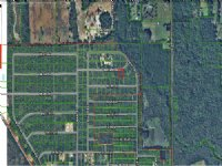 109 Ne 4th Ave., Palatka, Fl 32177 : Palatka : Putnam County : Florida