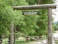 Petty Creek Meadows : Alberton : Mineral County : Montana