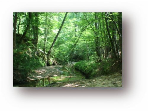 27 Acres W/ Home In Copiah County ( : Crystal Springs : Copiah County : Mississippi