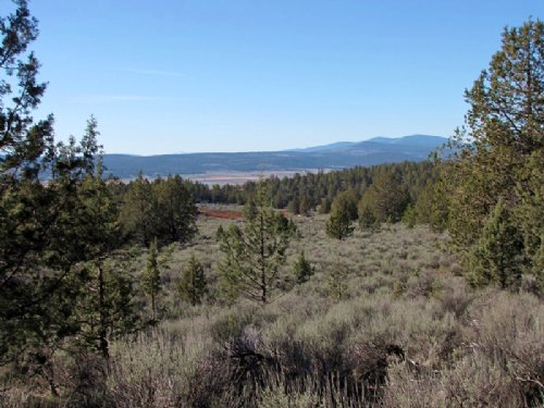 Sportsman Private Hillside Retreat : Bonanza : Klamath County : Oregon