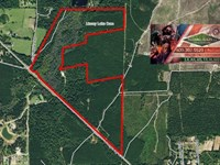 168.15 Ac - Recreational Tract W/ : Jasper : Jasper County : Texas