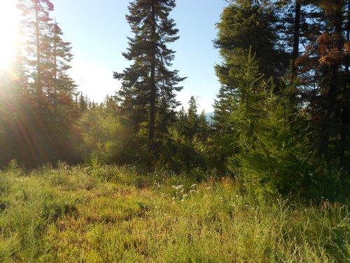 Heavenly Heights : Post Falls : Kootenai County : Idaho