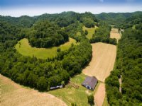 308 Acre Incoming Producing Farm : Whitleyville : Jackson County : Tennessee