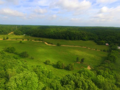 70 Acre Cattle Farm- All Fenced : Centerville : Hickman County : Tennessee