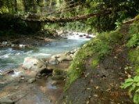 59+ River Valley Ranch : Esparanza De Turrialba : Costa Rica