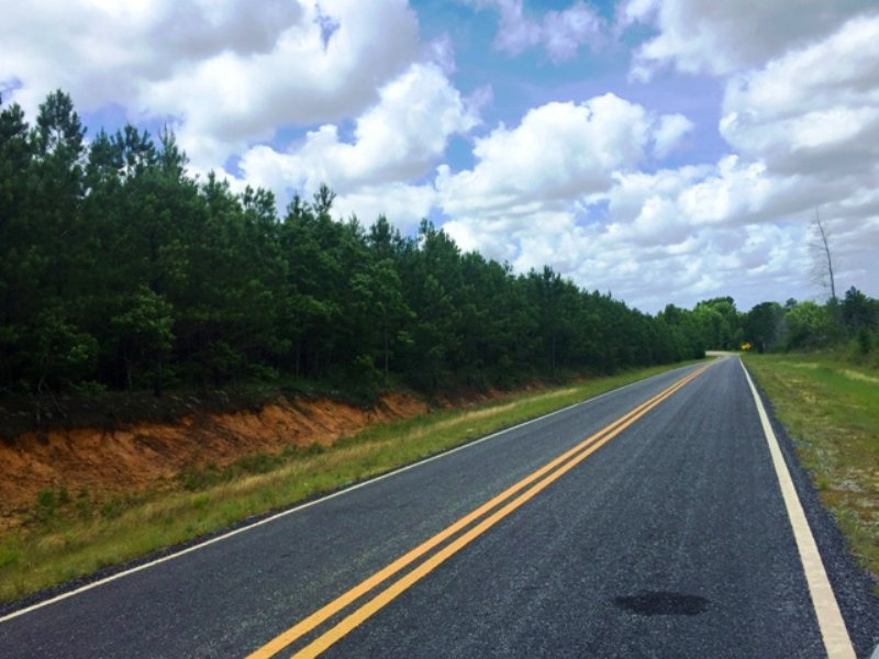 St. Gallilee Road South Tract : Summertown : Emanuel County : Georgia
