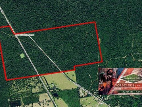 201 Ac - Timberland, Hunting, Home : Batson : Hardin County : Texas